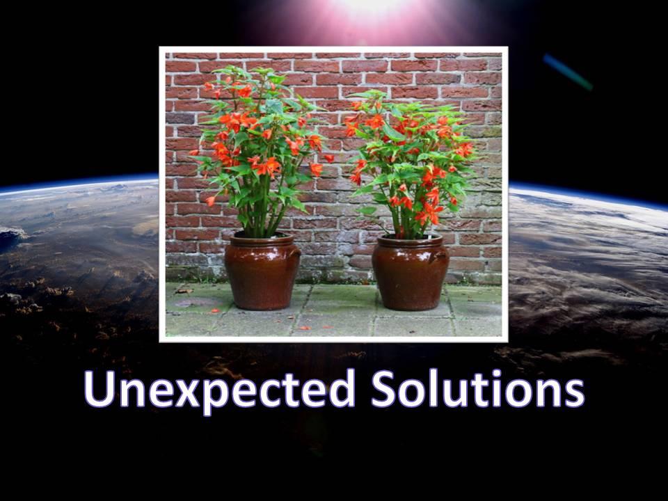 unexpectedsolutions