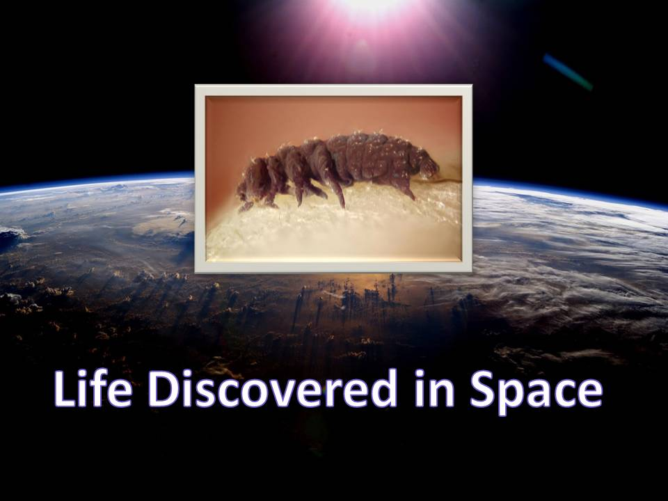 Lifediscoveredinspace