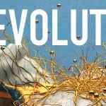 revolutionheader